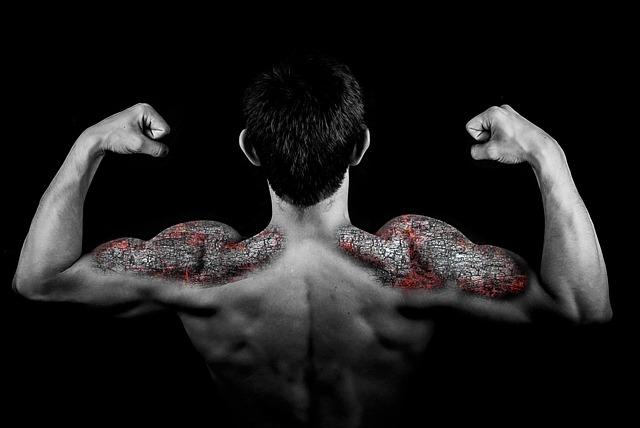 muž, kamenné svaly