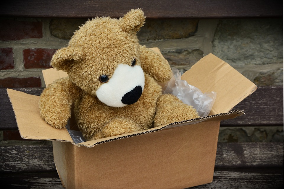 plyšík v krabici
